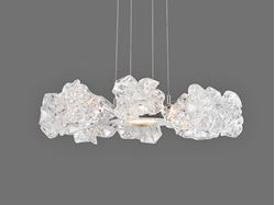Picture of Ring Chandelier | Blossom 8